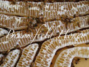 Broomfield Honey